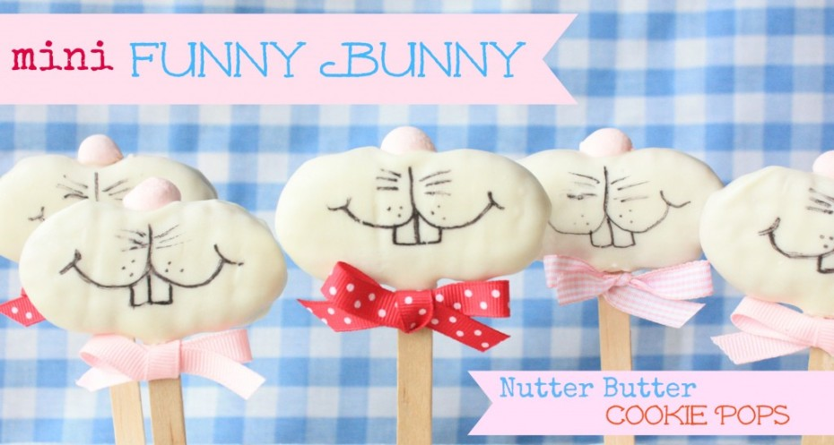 mini-funny-bunnies-010-23-1024x548